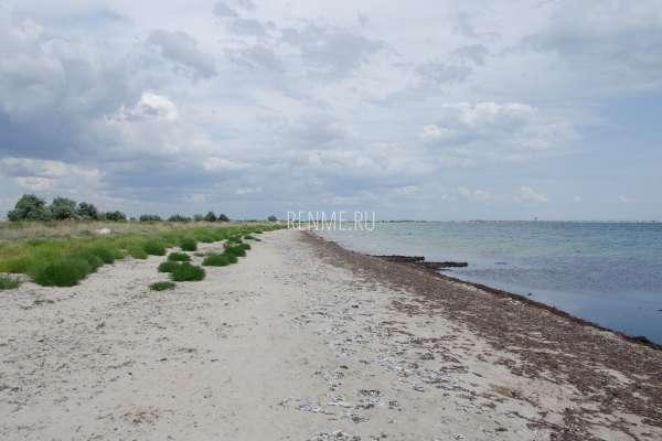 Дикие пляжи Черного моря. Фото Молочного