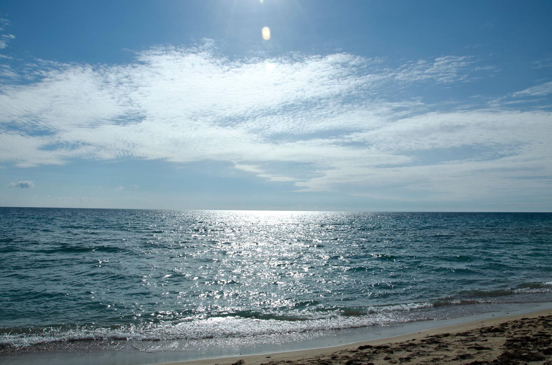 Море в марте. Фото Молочного