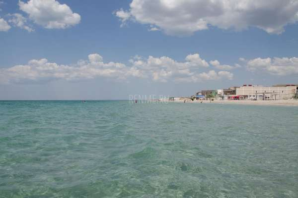 Отдых в Крыму у самого моря в Штормовом. Фото Штормового
