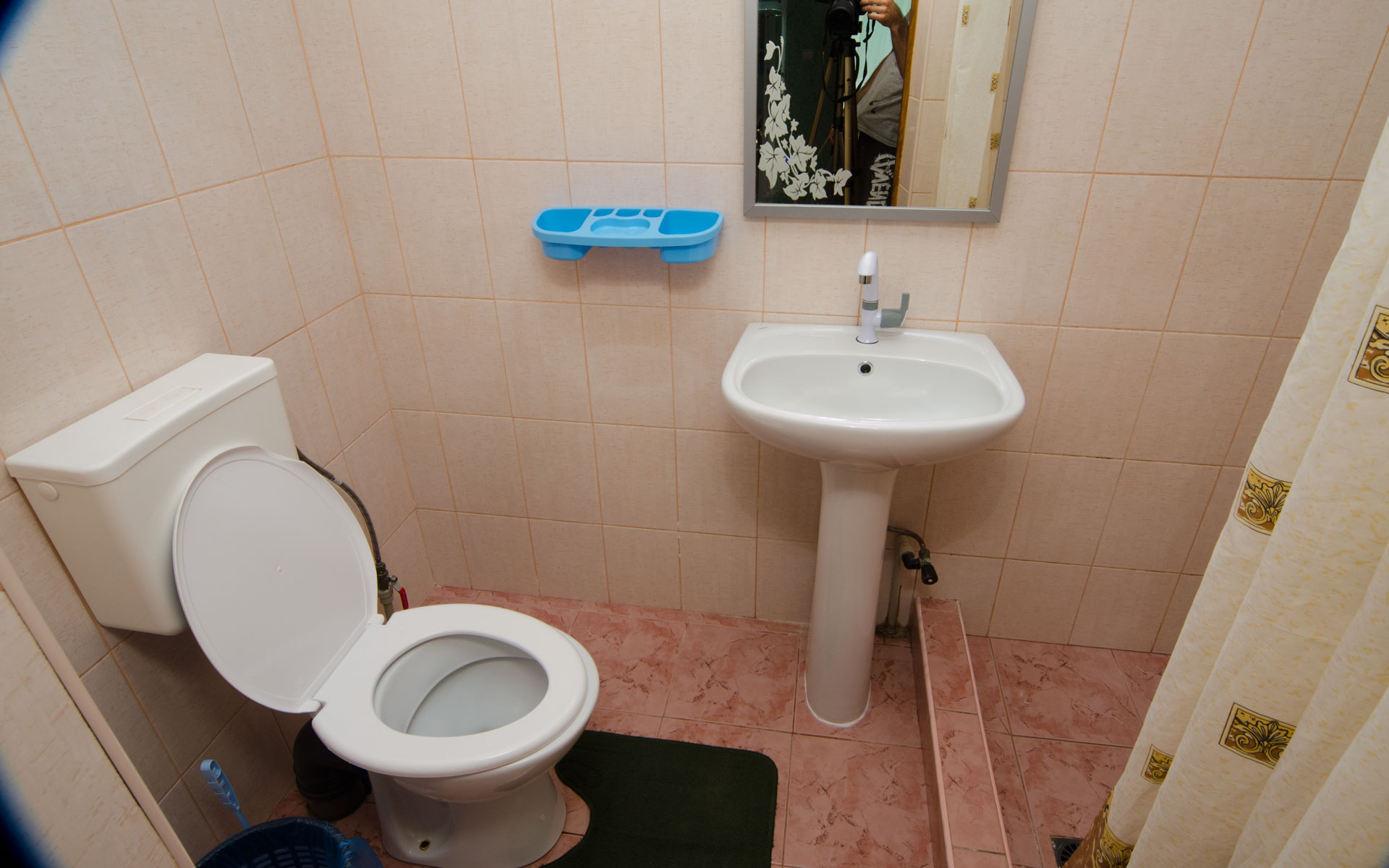 Душ, туалет. Лебеди. Апарт-отель на 8 квартир. Заозёрное
