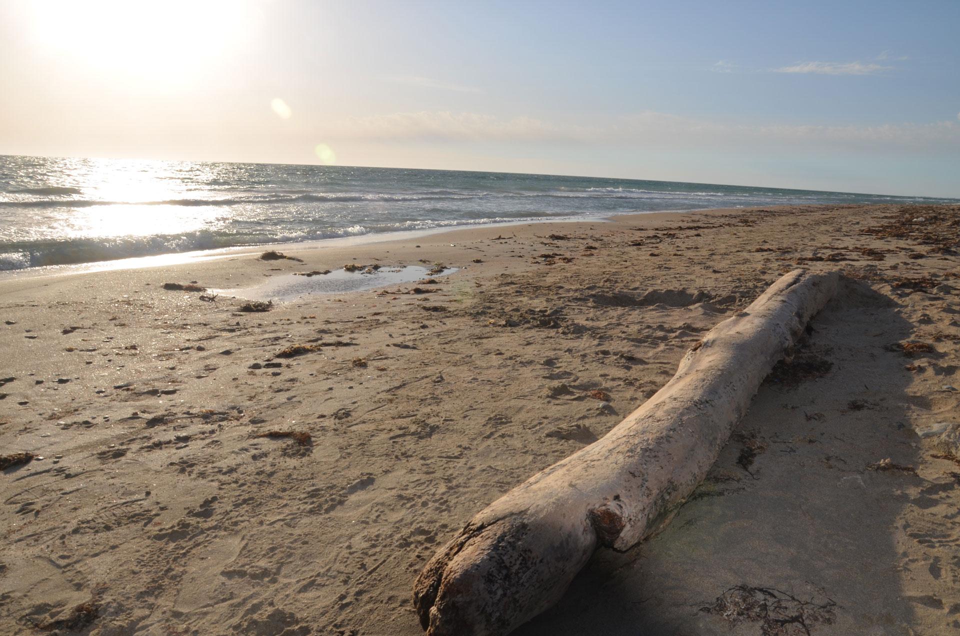 "Пляж ""Мохито"". Фото Заозёрного"