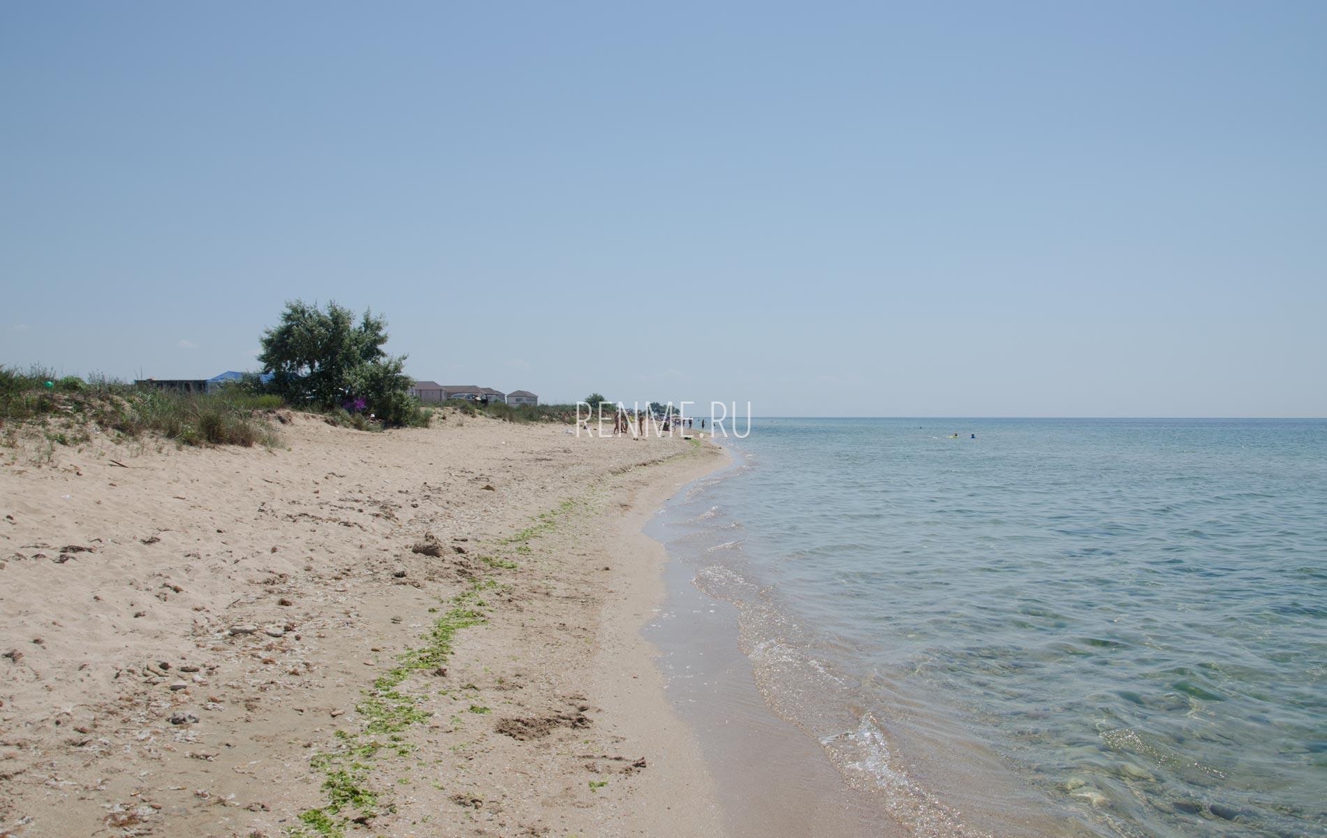 Дикий песчаный пляж в Крыму. Фото Заозёрного