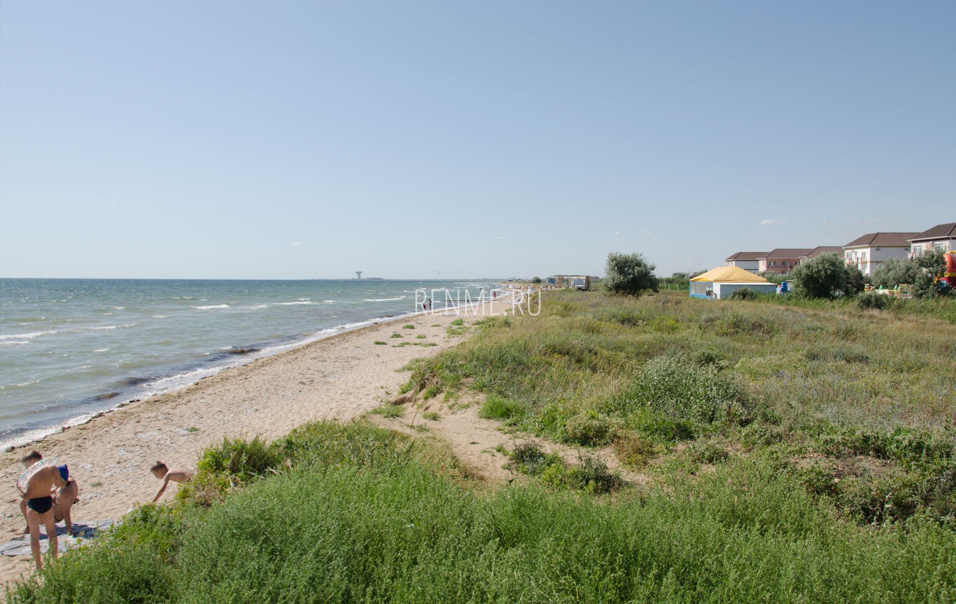 Дикие пляжи Песчанки 2019. Фото Заозёрного