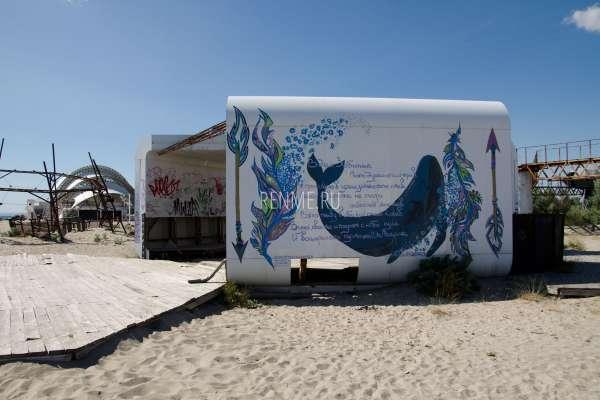 Кит на пляже. Фото Поповки