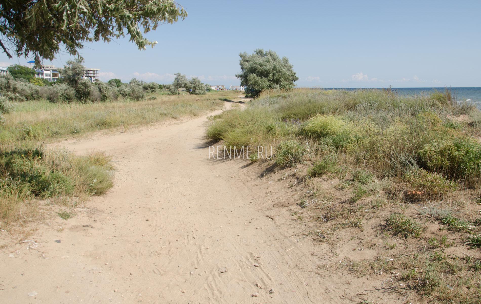 Дорога на дикий пляж. Фото Заозёрного