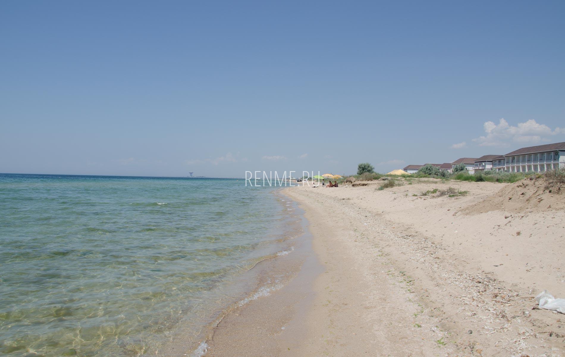 Песчаный дикий пляж в июле 2020. Фото Заозёрного
