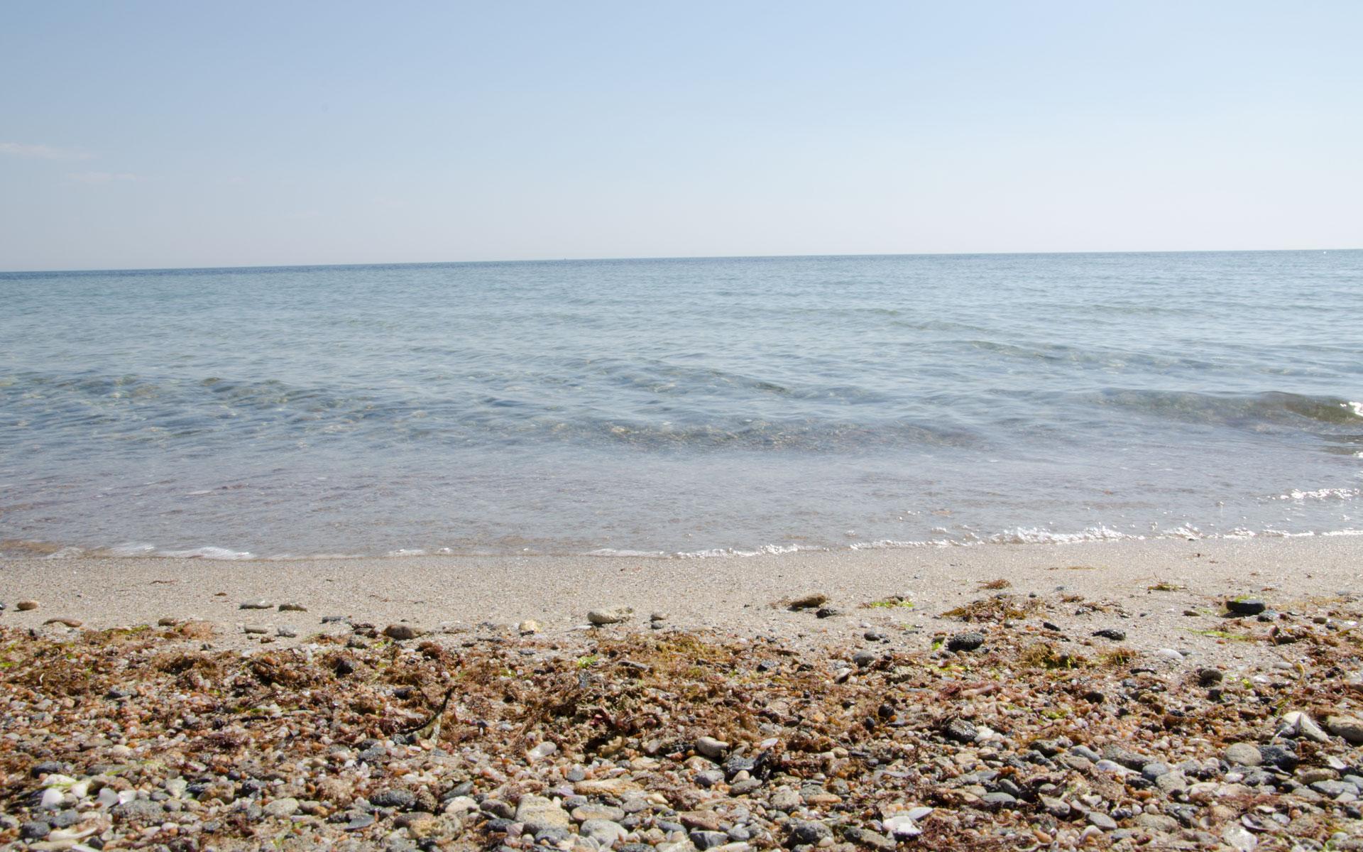 Бригантина - Чайка. Пляж. Фото Заозёрного
