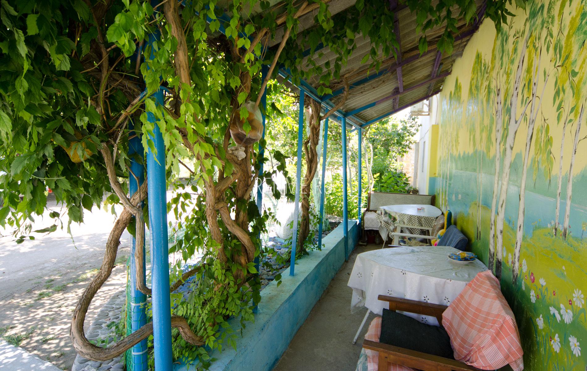 Зеленый дворик