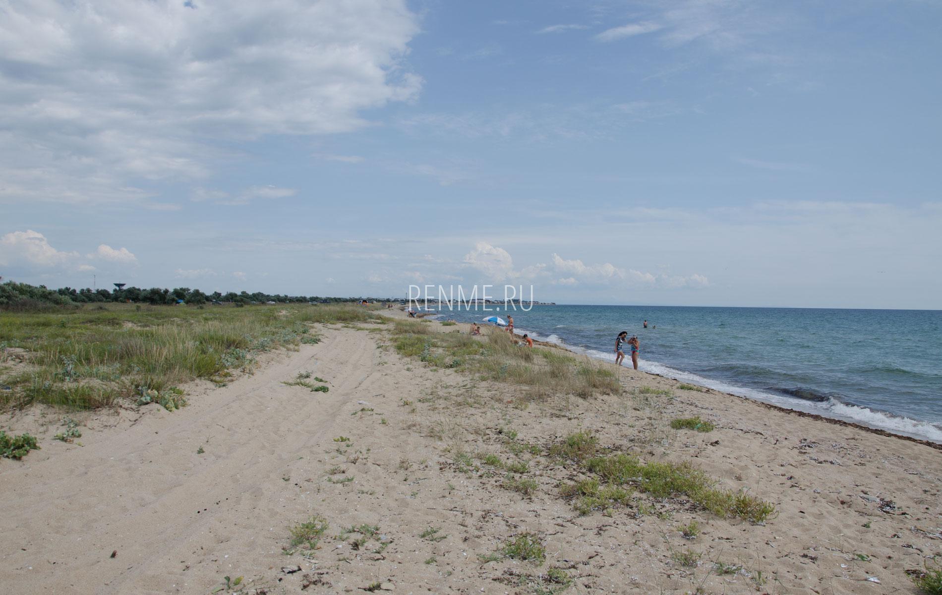 Дикий пляж в июле 2019. Фото Заозёрного