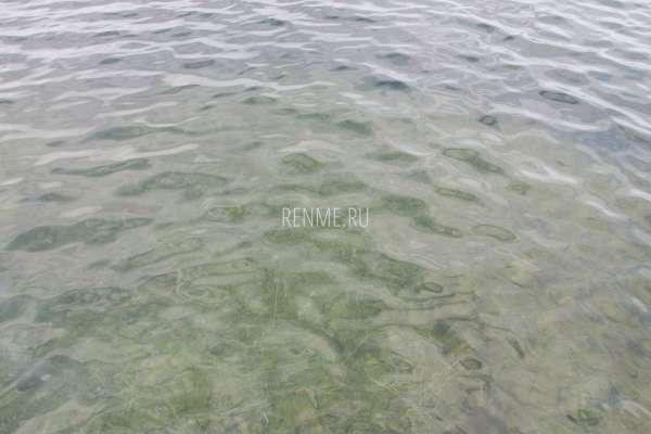 Озеро Донузлав. Фото