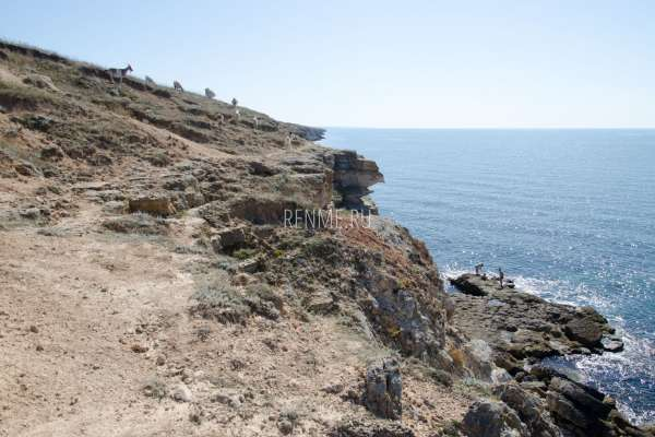 Обрывистый берег. Фото Межводного