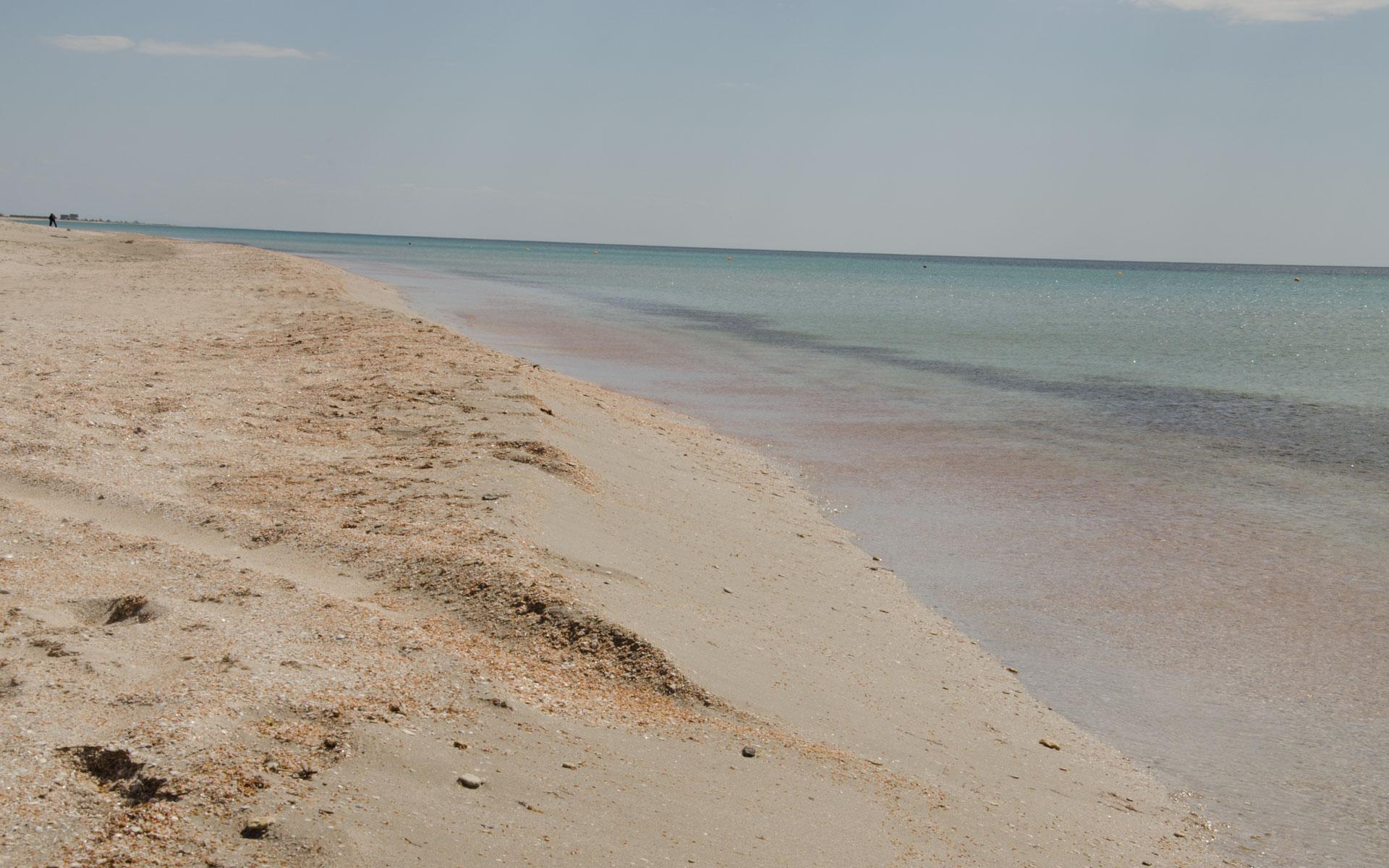 Песчаный пляж весной. Фото Штормового