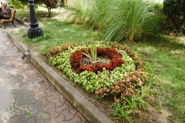 Цветы на набережной Евпатории. Фото Евпатории