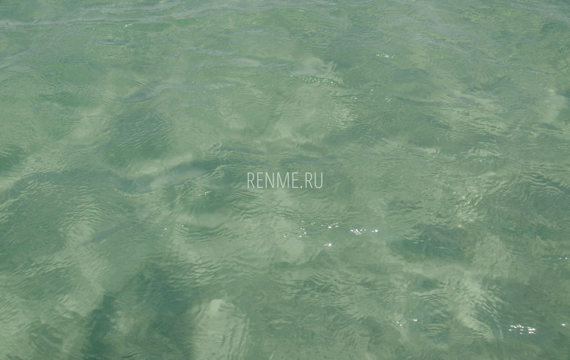 Морская вода в Заозерном Крым. Фото Заозёрного