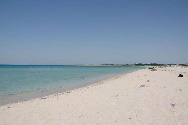 Дикий пляж Оленевки. Пляжи Оленевки