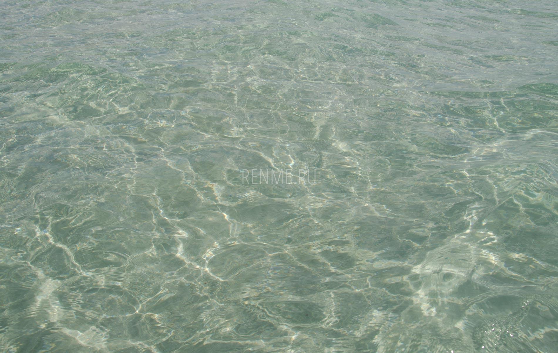 Прозрачная вода Черного моря. Фото Штормового