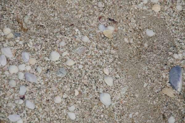 Какой песок на пляже в Мирном?. Фото Мирного