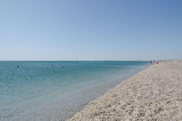 Море и дикий пляж в сезон 2019. Фото Евпатории