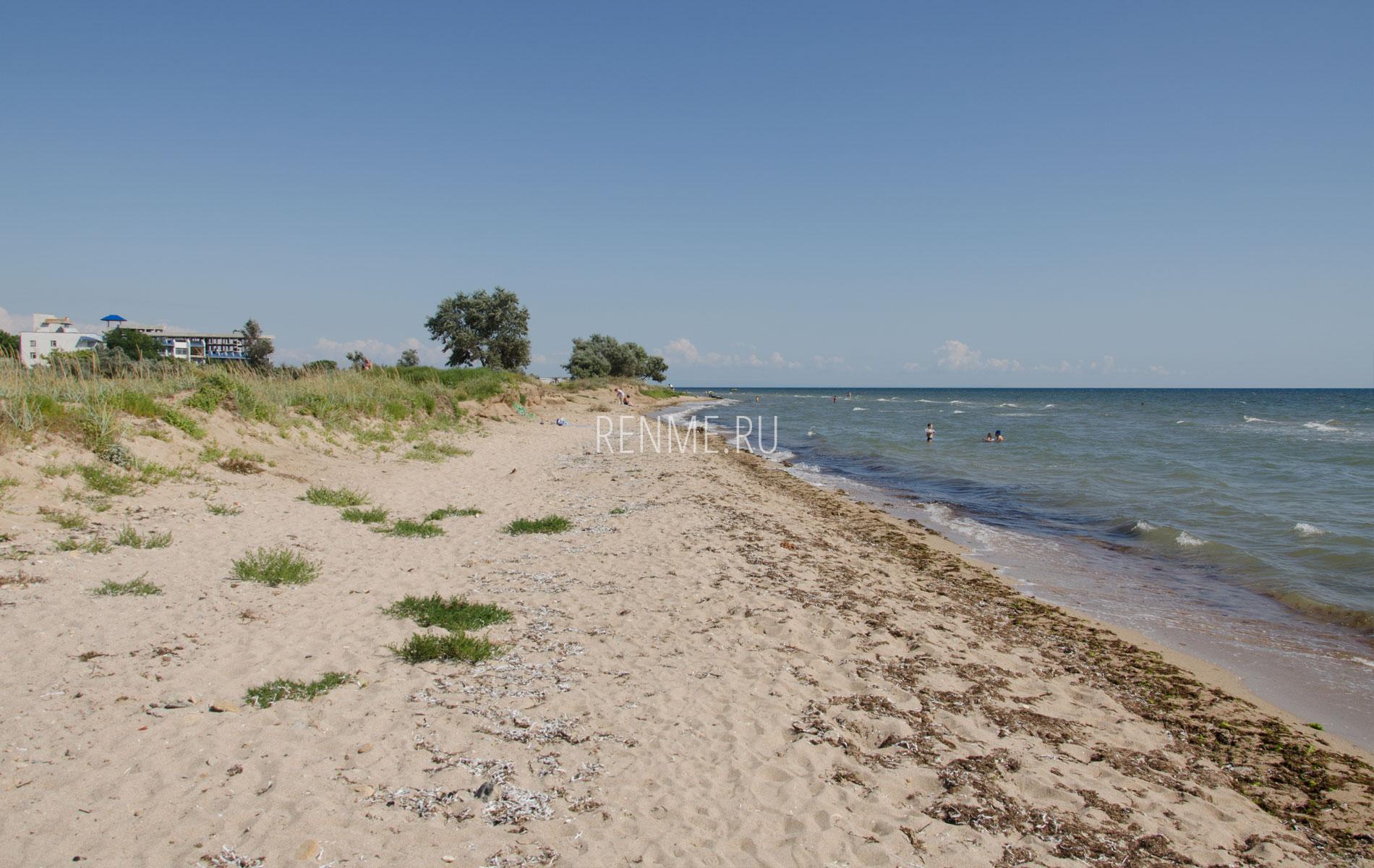 Красивый дикий пляж. Фото Заозёрного