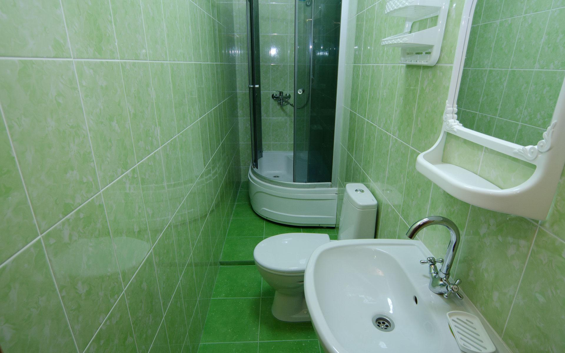 Туалет, душ. Номер люкс. Комфортабельные номера. Заозёрное