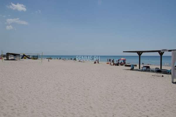 Берег Черного моря. Фото Штормового