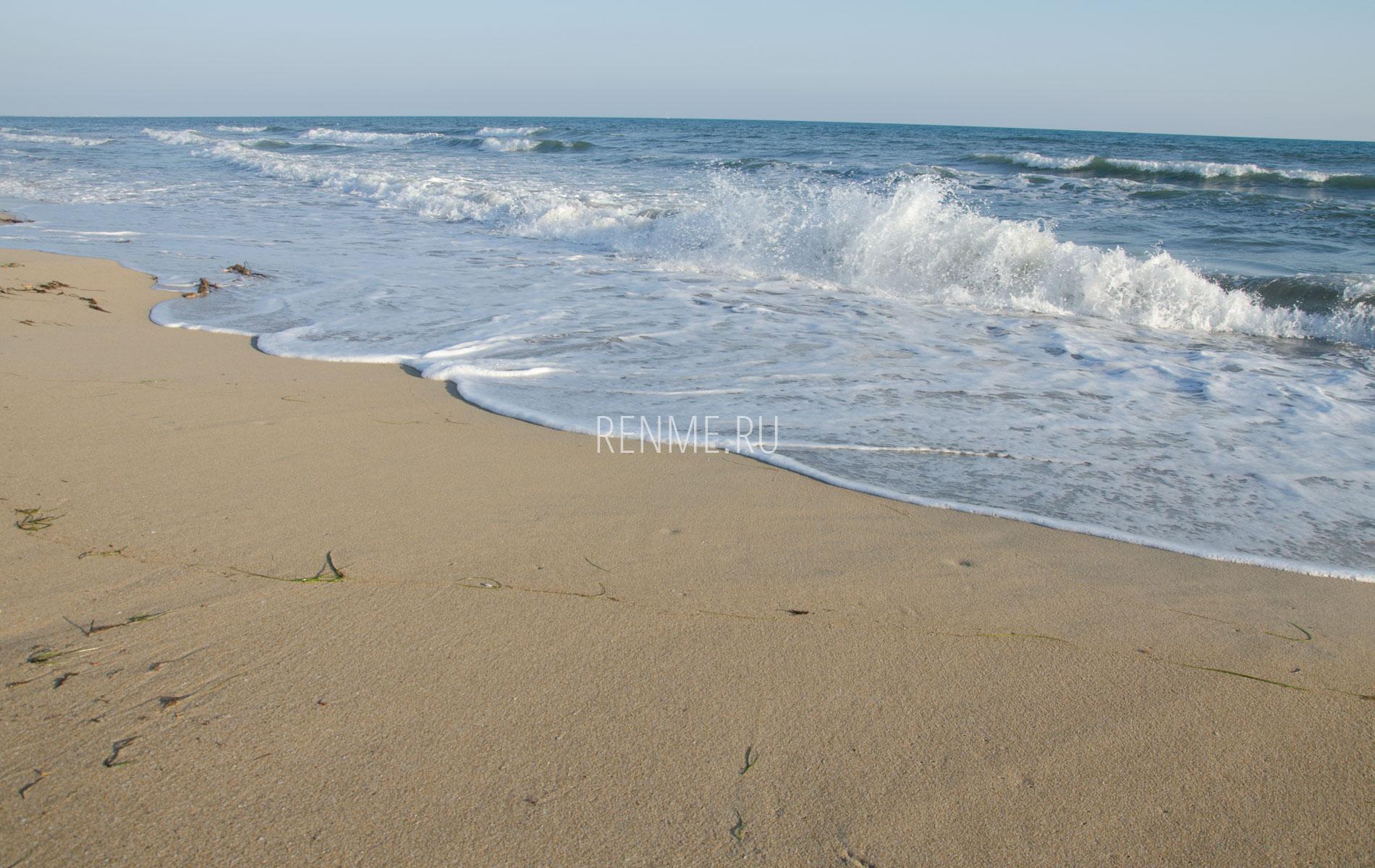 героиня романтичная картинки евпатории в крыму море имея товарища, который