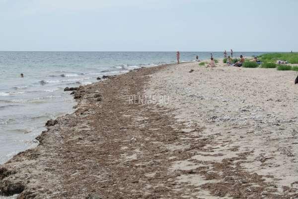 Самый дикий пляж. Фото Молочного