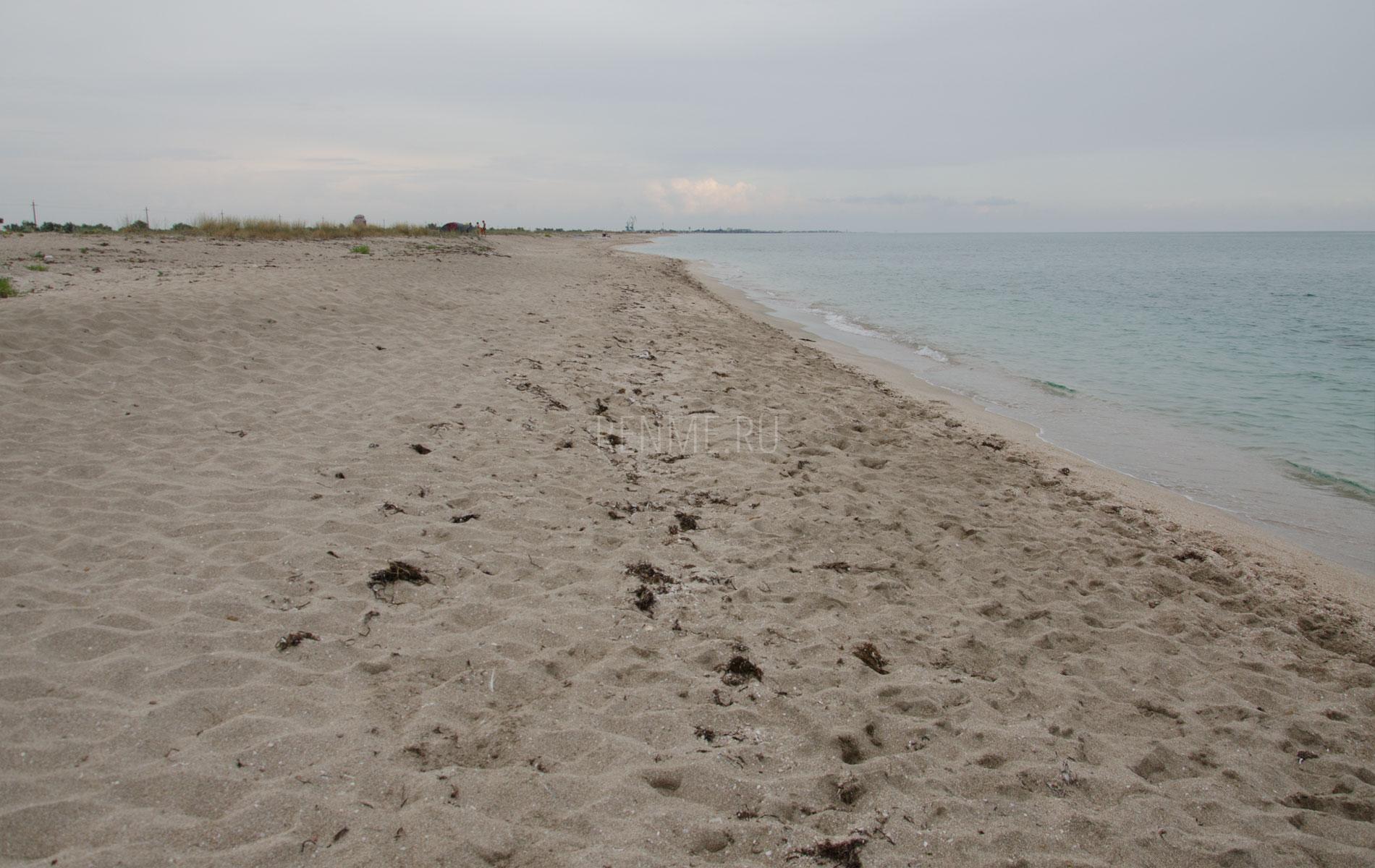 Песчаный пляж Беляус в августе. Фото Мирного