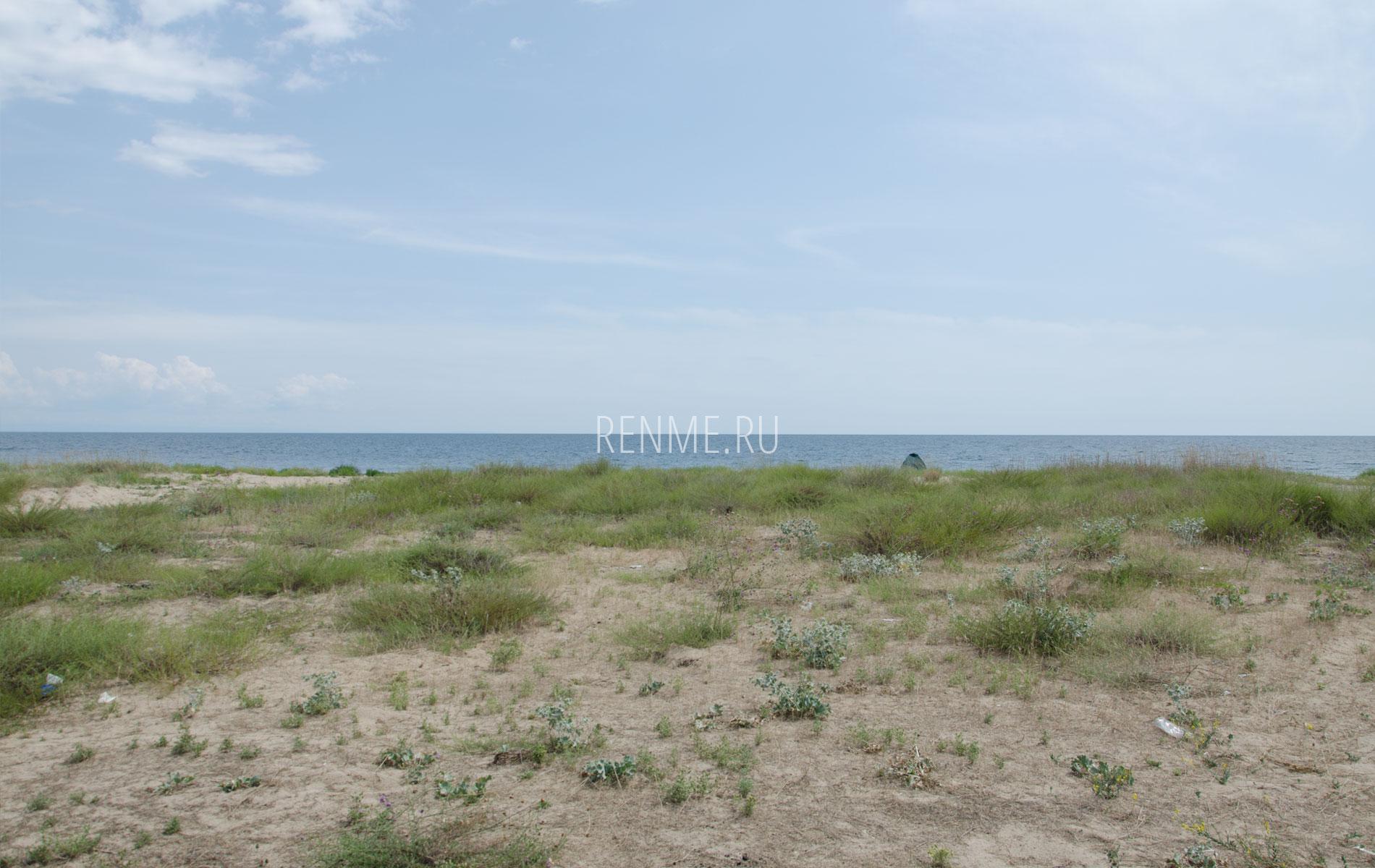 Дикий пляж летом 2019 под Молочным. Фото Молочного